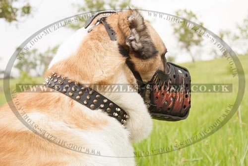 Dog Attack Training Leather Muzzle