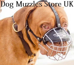 dog muzzle UK bestseller