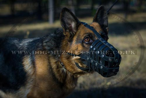 German Shepherd Leather Muzzle for Dogs Biting