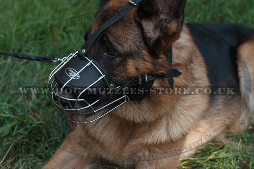 The Best German Shepherd Muzzles UK