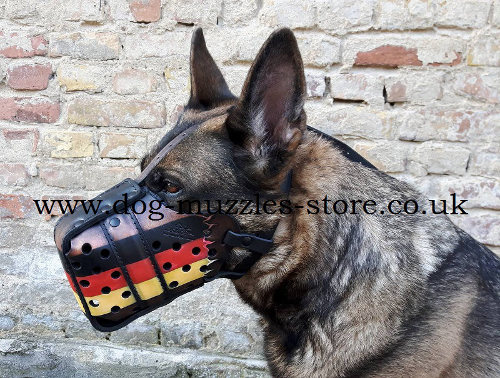 Painted Dog Muzzle K9