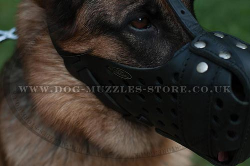 K9 Dog Muzzle for German Shepherd