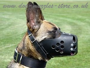 Leather Dog Muzzle K9