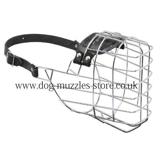Large German Shepherd Muzzle Size