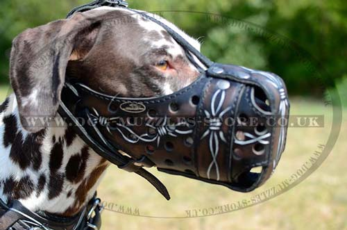 Large dog muzzle for training