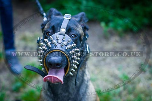 Belgian Malinois Muzzle for Dogs