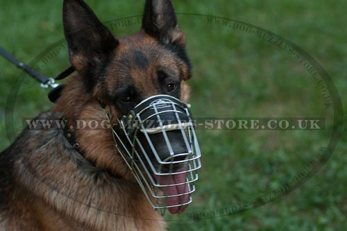Padded Wire Dog Muzzle for German Shepherd