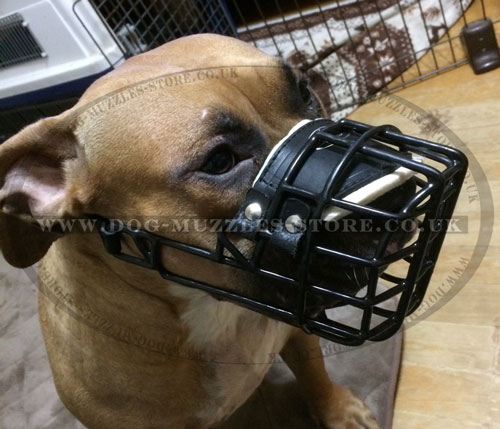 Pitbull Cage Muzzle for Large Dogs