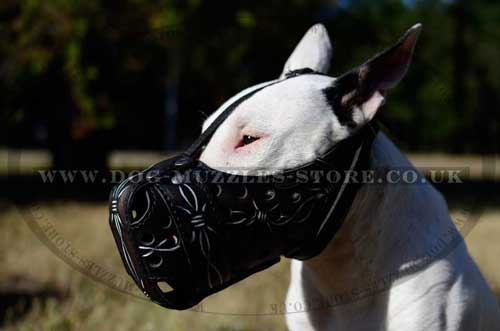 Police Dog Training Muzzle