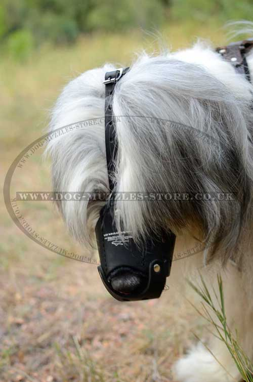Russian Shepherd Leather Dog Muzzle for Training