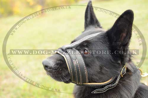 German Shephard soft padded dog muzzle