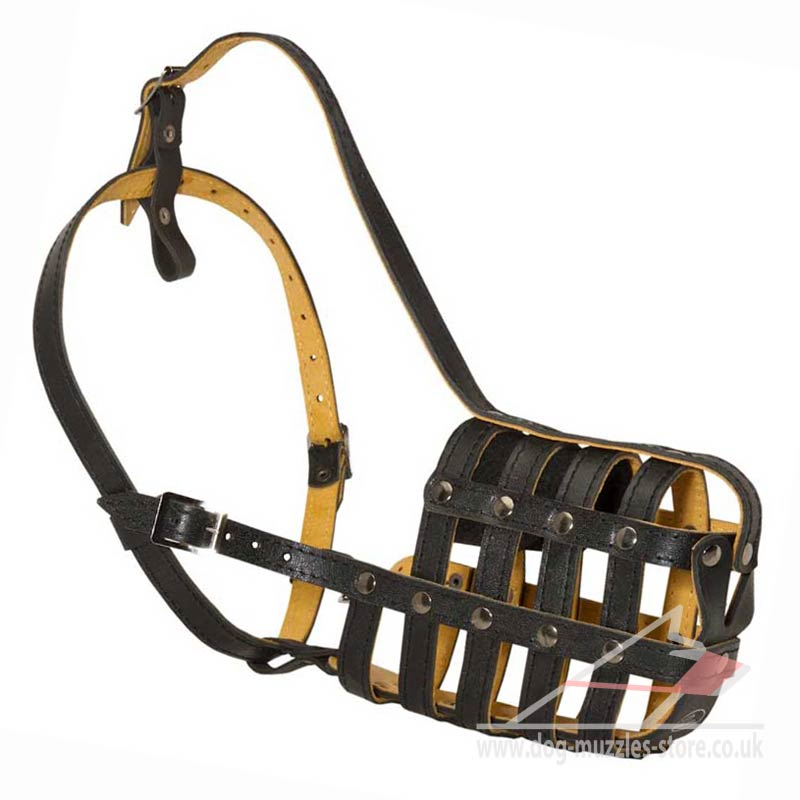 St Bernard Muzzle Strong Leather Basket Big Dog Muzzle