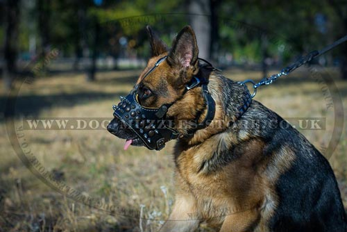 Designer Dog Muzzle for German Shepherd