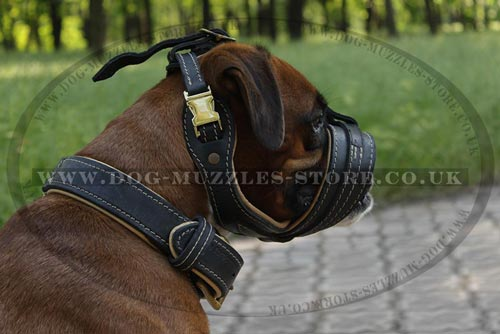 Soft Leather Dog Muzzle for Boxer