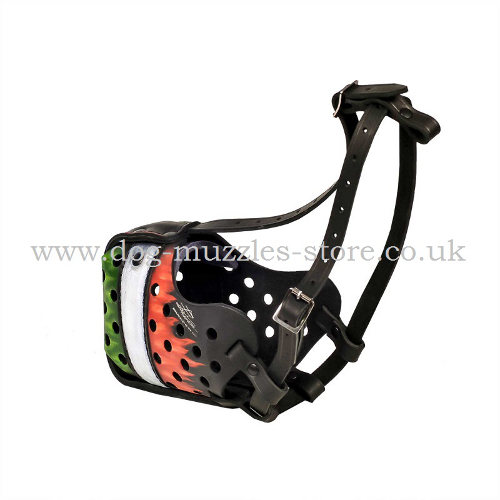 Leather Muzzle for Dogs Training