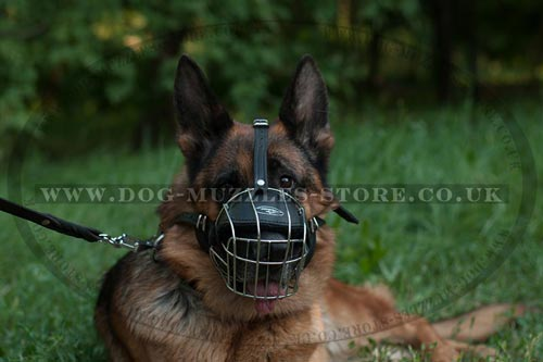 German Shepherd Dog Muzzle Wire Basket