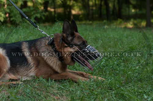 Buy German Shepherd Muzzle UK