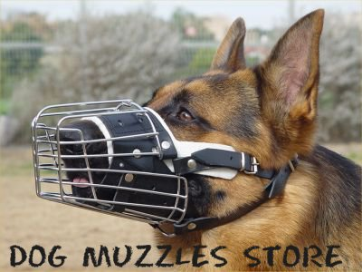Padded dog muzzle for sale