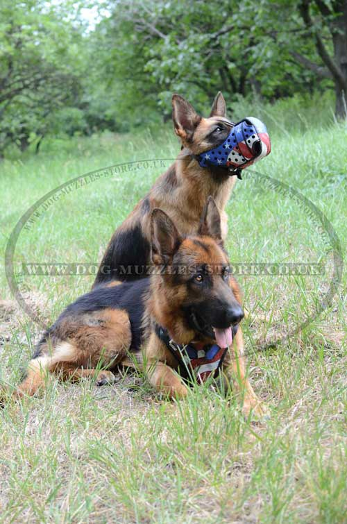 Working dog muzzle
