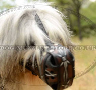 Dogs Muzzles for Shepherds, Super Design
