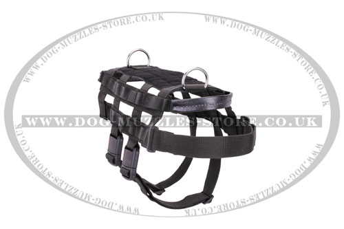 professional dog harness online UK