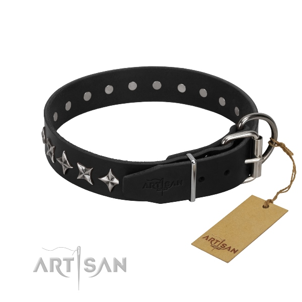 durable leather dog collar online in UK