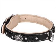 Exclusive Dog Collar Design, Soft Padded, Braided Leather