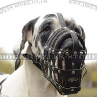 Big Dog Muzzle for Great Dane, Soft Padded Royal Design