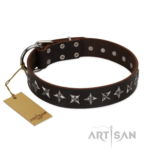buy Rock star dog collars