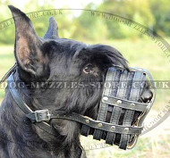 Leather Basket Dog Muzzle for Giant Schnauzer