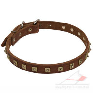 Handmade Leather Dog Collars UK | Leather Dog Collar with Studs