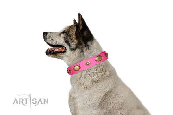 buy cool dog collars for female dogs Akita Inu