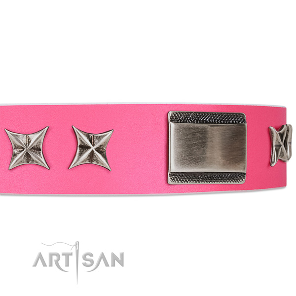 Leather dog collar with plates FDT Artisan