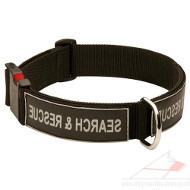 K9 Dog Collar for Dog Training | Service Dog Collars UK