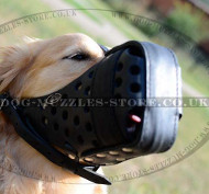 Closed Dog Muzzle Basket for Golden Retriever Muzzle Size