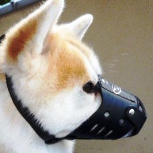 Akita Husky Leather Dog Muzzle | The Best Husky Muzzles