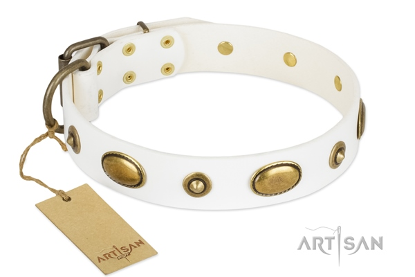 Handmade Designer Big Dog Collar by FDT Artisan