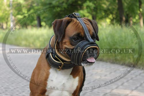 No Bark Dog Muzzle for Short Nosed Dogs as Boxer, Soft&Strong
