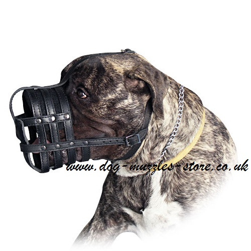 Soft Bullmastiff Muzzles UK Made of Leather