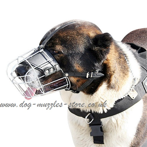 Buy Caucasian Shepherd Dog Muzzle