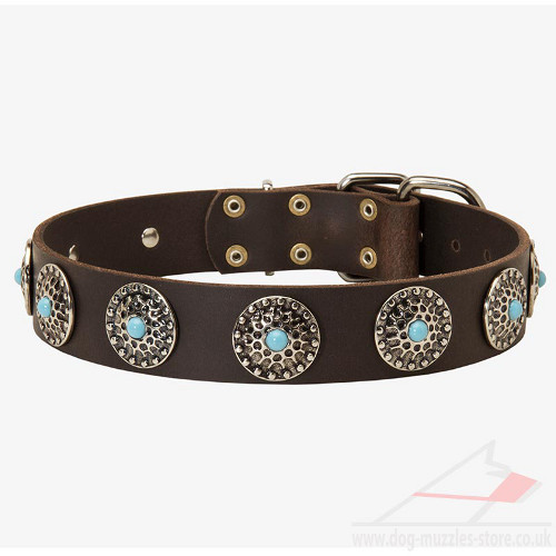 Designer Dog Collar with Blue Stones