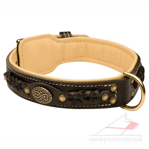 Luxury Leather Dog Collar | Large Dog Collar of Exclusive Design