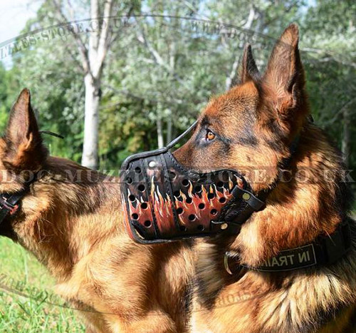 "German Shepherd Dog Muzzle ""Flame"" for K9 Training"