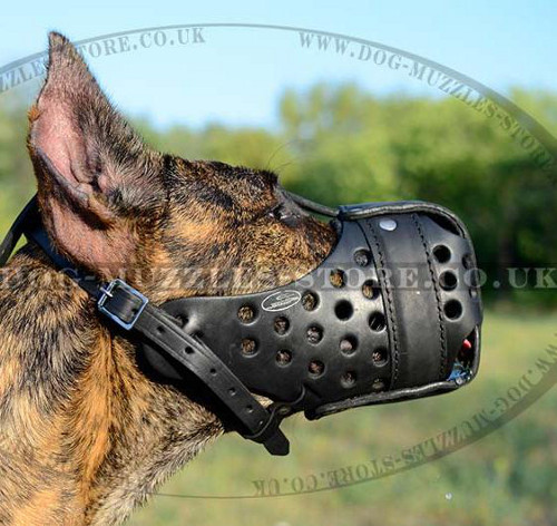 Great Dane Training Muzzle for K9 Dogs | Large Dog Muzzle