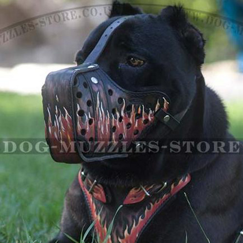 "Cane Corsos Designer Dog Muzzle for K9 Training ""Flame"""