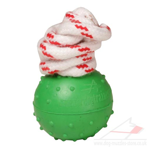 Non Sinking in Water Dog Toy Ball with Rope, 2 in (5 cm)