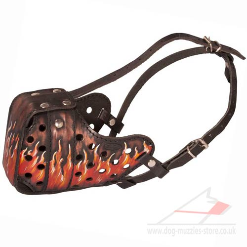Best Dog Muzzle for Agitation and Attack Training of Large Dog