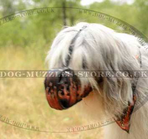 "Leather Muzzles for Dogs with Paining ""Flame"""