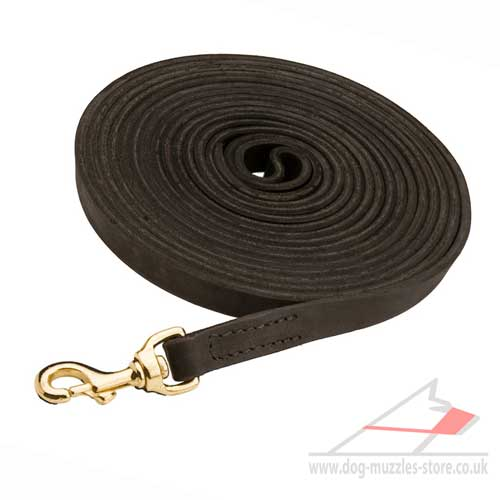Dog Training Leash UK
