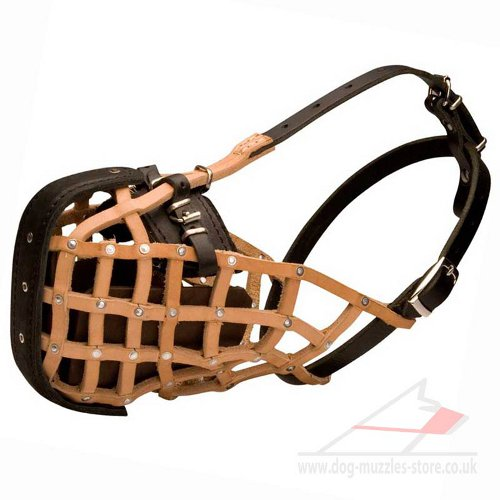Ultimate Supreme Attack / Agitation Training Dog Muzzle